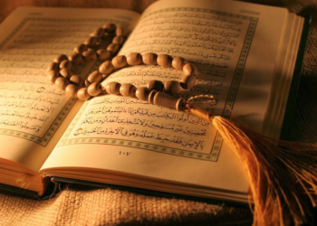 Quran Shares Pal Pal News